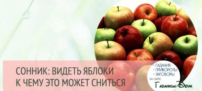 К чему во сне видеть мелкие яблоки. К чему снятся Яблоки