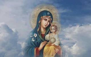 Молитва матушка пресвятая богородица укрой меня своим покрывалом