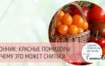 К чему снятся помидоры красные женщине или мужчине — сонник. Приснились помидоры во сне