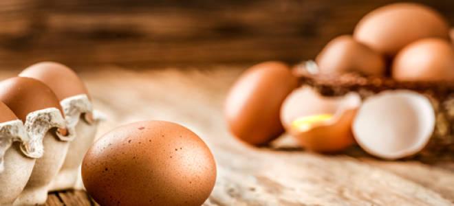 Что означает видеть во сне яйца куриные. Значения сна про куриные яйца